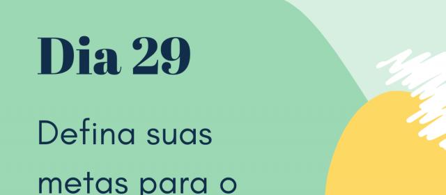 Dia 29 – Defina suas metas para o próximo ano
